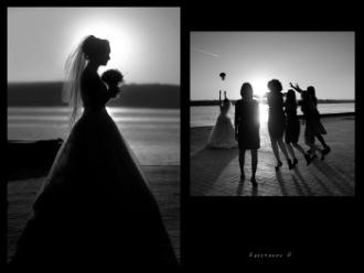 Свадебный фотограф Dmitriy Shestakov - Запорожье